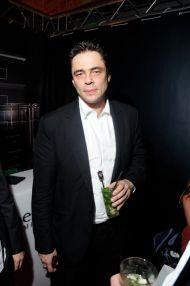Benicio del TORO©gpetipas